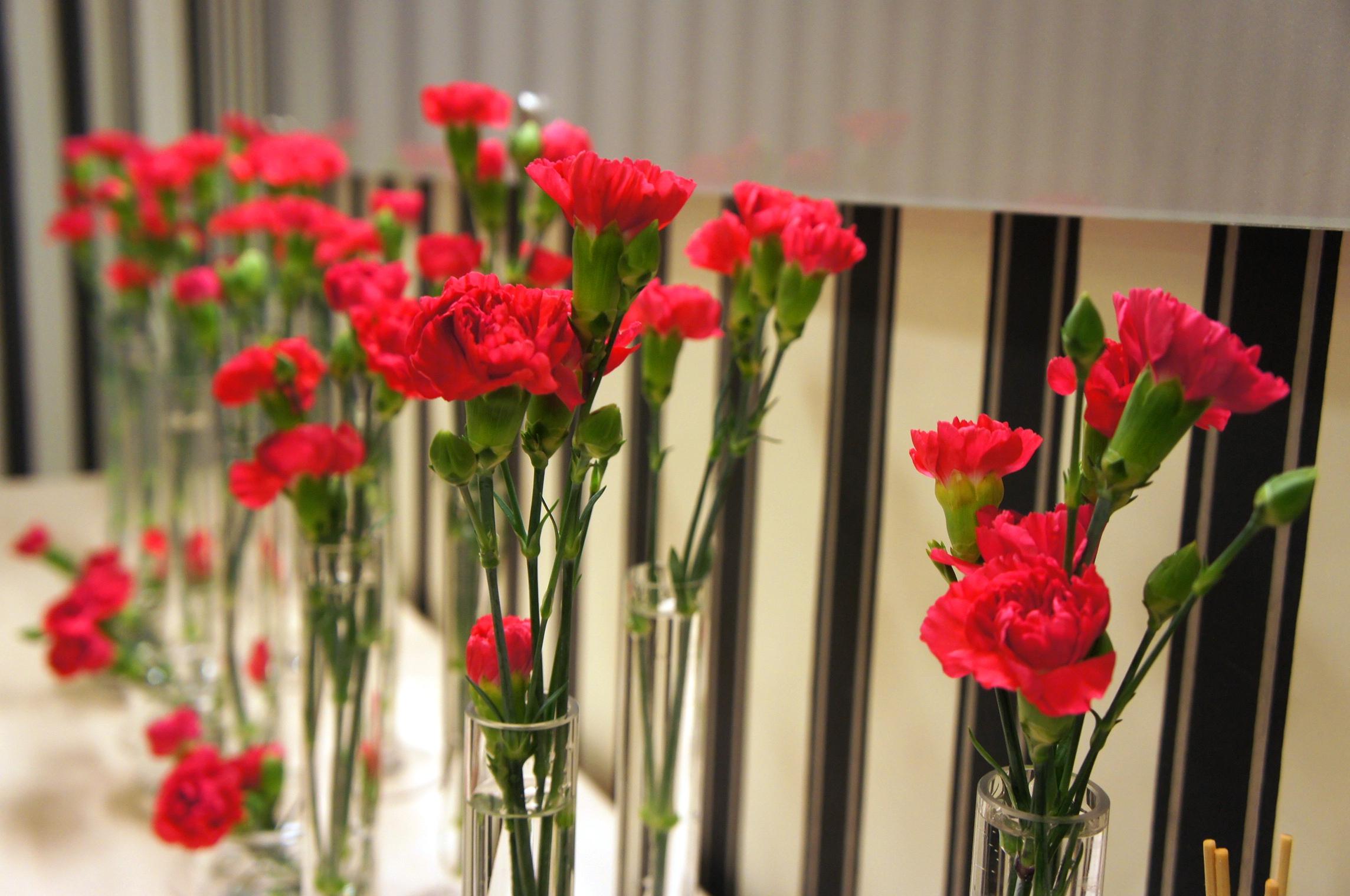 Goździki gałązkowe w szklanych menzurkach jako dekoracja recepcji